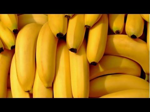 Curso Produção de Banana - O Plantio - Cursos CPT