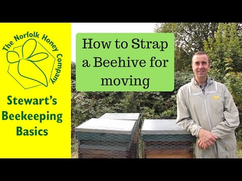 How To Strap a Hive for Moving - #Beekeeping Basics - The Norfolk Honey Co.