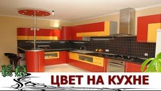 getlinkyoutube.com-ЦВЕТ на Кухне.   Самые Интересные идеи