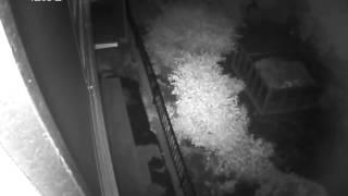 getlinkyoutube.com-自宅の監視カメラに写り込んだ不思議な物体