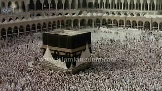 Nguzo, Wajibu na Sunna za Umra| islamkingdom