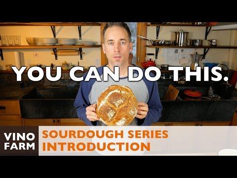 Sourdough Series - Introduction - Let's Bake Bread