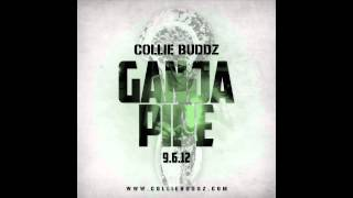 Collie Buddz - Ganja Pipe
