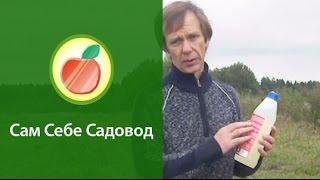 """getlinkyoutube.com-Питомник плодовых деревьев """"с нуля"""".  (1)"""