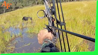 getlinkyoutube.com-Pig Hunt 2012 June Gulf Country Australia Wild Boars EP.21