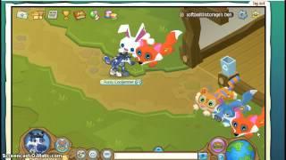 getlinkyoutube.com-Animal Jam- my Epic Fox Plushie