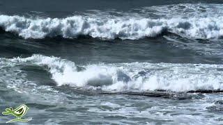 getlinkyoutube.com-3 Hours of Soothing Music | Flute | Piano | Ocean | Background Sleep Music
