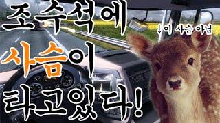 getlinkyoutube.com-견자희의 조수석엔 사슴이 타고있다
