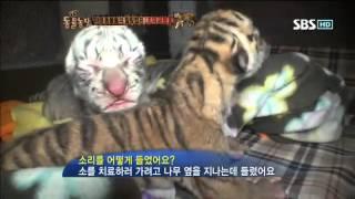 getlinkyoutube.com-동물농장 579회 #5 (애니멀특종-조공원2)