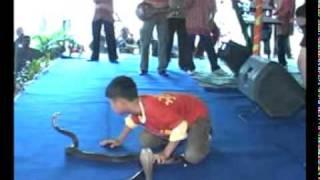 getlinkyoutube.com-om sonata tari ular