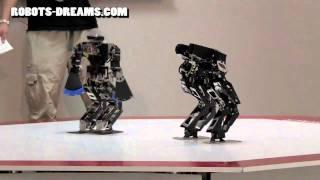 getlinkyoutube.com-ROBO-ONE Humanoid Helper Robot: Lightweight Tournament