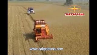 getlinkyoutube.com-รถเกี่ยวข้าวเย็น ๆ ศักดิ์พัฒนา เย็นสบาย/World's Combine Harvester