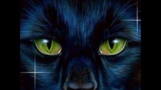 getlinkyoutube.com-Top 10 Saddest Warrior Cats Deaths