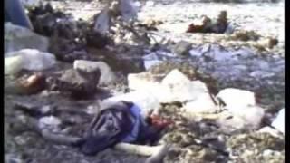getlinkyoutube.com-Katastrofa Lotnicza Okęcie 14.03.1980 - Film Dokumentalny