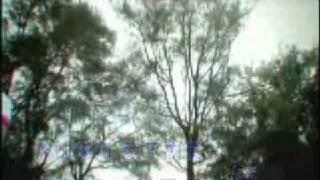 [男人之痛] Benny Chan 陳浩民 - 完美飛行 Karaoke Version