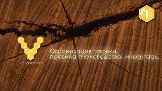 getlinkyoutube.com-Организация пасеки, правила пчеловодства, инвентарь