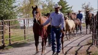 getlinkyoutube.com-Montana Horse Ranch - America's Heartland