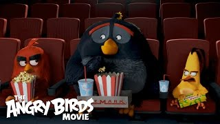 getlinkyoutube.com-The Angry Birds Movie - The Flock Visits Cinemark