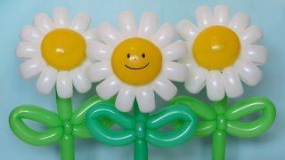 getlinkyoutube.com-Ромашка веселая из шаров / Daisy flower (Subtitles)