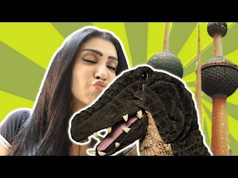 التمساح الحلقة ١٣: الرحلة الكويتية الجزء الثاني | Temsa7LY 1
