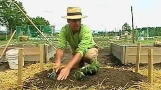 getlinkyoutube.com-Making a Raised Bed Garden