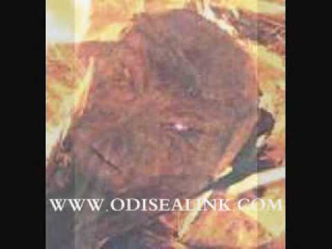 Dr Jonathan Reed Alien Encounter Ufo Contact October 15 1996 BLOOD CRANIAL MUSCLE AND SKIN TISSUE ANALYSIST Odisealink.com Part 13 -JsN0X_7dsng
