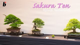 getlinkyoutube.com-Sakura Ten 2013 Broodfabriek Rijswijk Den Haag