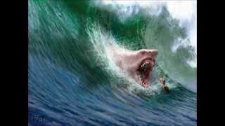 getlinkyoutube.com-Top 10 Tiburones mas Peligrosos y Agresivos