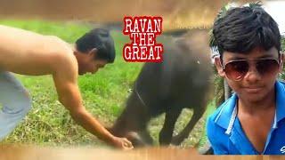 Ravan the great dokiparru short film