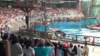 getlinkyoutube.com-Waterworld - Universal Studios Singapore