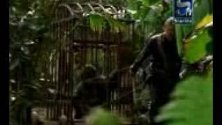 Funny Video - Kollywood George of .3gp