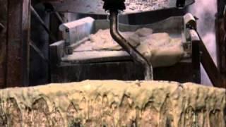 getlinkyoutube.com-102 Dalmatians | Cruella de Vil scenes | Part 4