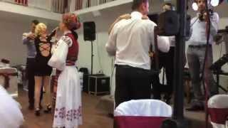 getlinkyoutube.com-Violeta Gherman, Stangaciu si Stangaciu Jr - polcă Bihor, live nuntă 2015