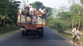 getlinkyoutube.com-Crazy cow transport Bangladesh