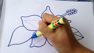 MUST WATCH LEARN HOW TO DRAW BASIC SIMPLE HIBISCUS FLOWER FOR NEW LEARNER