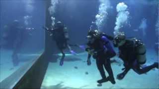 Diveheart @ the Georgia Aquarium 2013