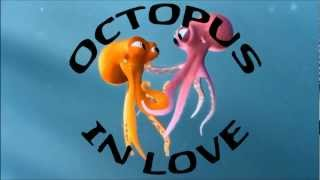 getlinkyoutube.com-Octopus in Love
