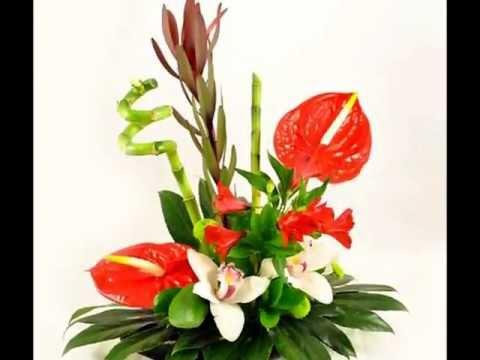 Aranjamente florale cu anthurium rosu