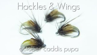 getlinkyoutube.com-Fly Tying October Caddis Pupa | Hackles & Wings