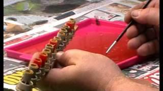 getlinkyoutube.com-včely v Beskydech-chov matek-larvování