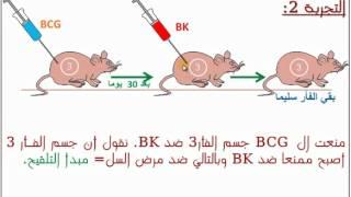 getlinkyoutube.com-المناعة الخلوية