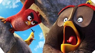THE ANGRY BIRDS   Movie CLIP # 3 (2016)