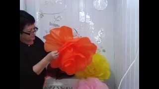 getlinkyoutube.com-Aula 16 - Como fazer Flores gigantes em papel de seda