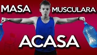 getlinkyoutube.com-Masa Musculara Acasa