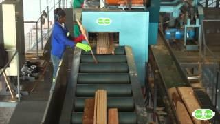 getlinkyoutube.com-Multisaw - Sawmill line