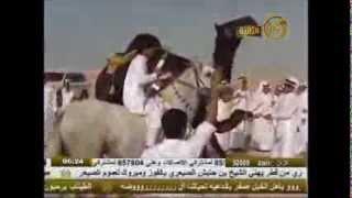getlinkyoutube.com-عرض الخروفه  .. فردي .. ملك الشاعر علي الدعيه  .. شاعر المعنى