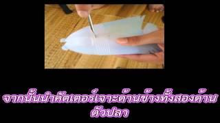 getlinkyoutube.com-ปลาหมอสีจากขวดน้ำพลาสติก
