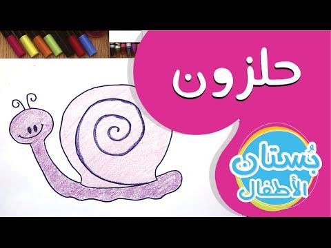 سلسلة رسمة ومعلومة - ح8: كيف أرسم حلزون