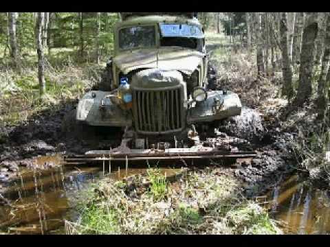 Находки в партизанском лесу