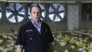 getlinkyoutube.com-Meet the Chicken Farmer - David Speller